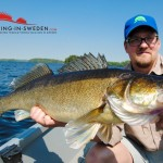 Zander Fishing: Pelagic Vertical Jigging