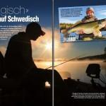 Zander in Schweden - Pelagisches vertikal Fischen