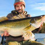 Zander Fishing in Sweden